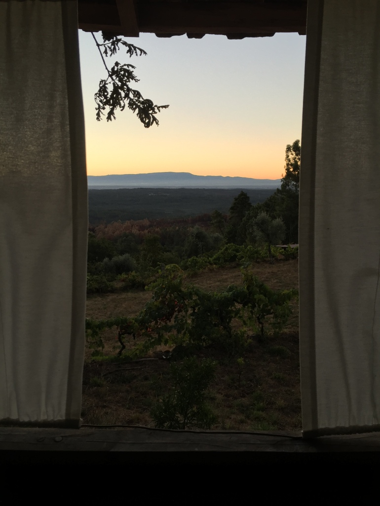 staring out windows in Portugal